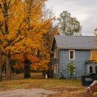 November First-Time Homebuyers Webinar Series
